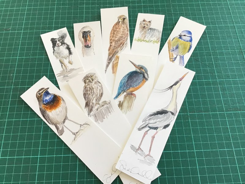 Birds and animals Sue Dudill artiste Ile de Re