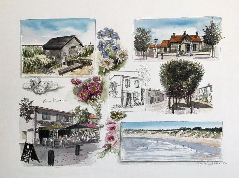 La Noue watercolour sketch Sue Dudill artiste ile de Re